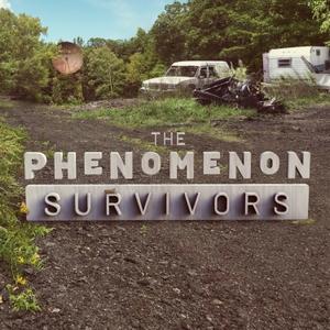 The Phenomenon by Luciola Creative