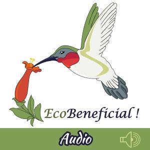 EcoBeneficial! Landscape Tips with Kim Eierman (audio) by Kim Eierman