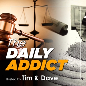 The Daily Addict Podcast : Drug Law Reform Network by Tim and Dave