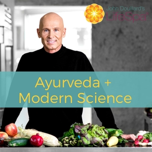 LifeSpa: Ayurveda Meets Modern Science by Dr. John Douillard, DC
