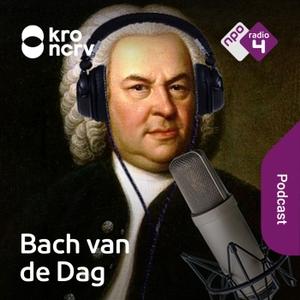 Bach van de Dag by NPO Radio 4 / KRO-NCRV