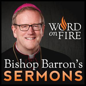 Bishop Robert Barron's Sermons - Catholic Preaching and Homilies by Bishop Robert Barron