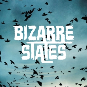 Bizarre States by Nerdist Industries