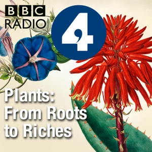 Plants: From Roots to Riches by BBC Radio 4 Extra