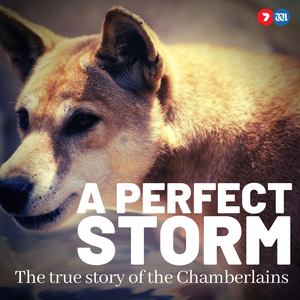A Perfect Storm: The True Story of The Chamberlains