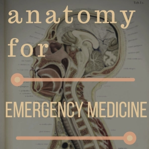 Anatomy For Emergency Medicine by Andy Neill