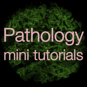 Pathology Mini Tutorials by The University of Nottingham