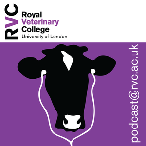 Research Podcasts  – Veterinary Science on the Move by The Royal Veterinary College