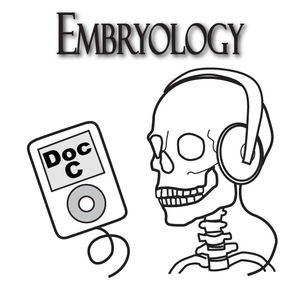 Biology 3130 -- Embryology with Doc C by Dr Gerald Cizadlo