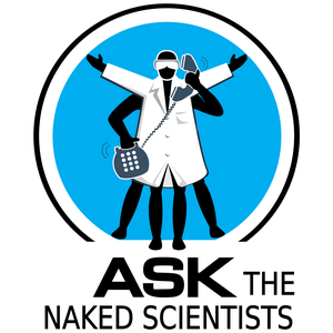 Ask the Naked Scientists Podcast by Dr Chris Smith, Dave Ansell