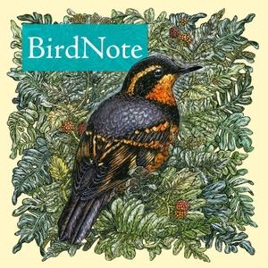 BirdNote Daily by BirdNote