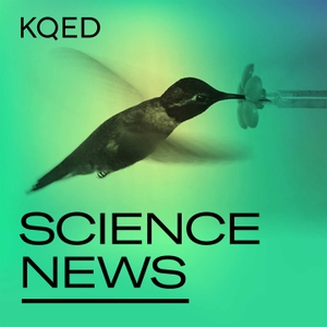 KQED Science News by KQED