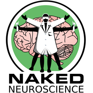 Naked Neuroscience, from the Naked Scientists by Katie Haylor