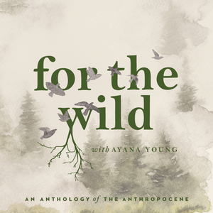 For The Wild by For The Wild