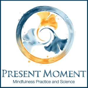 Present Moment: Mindfulness Practice and Science by Ted Meissner