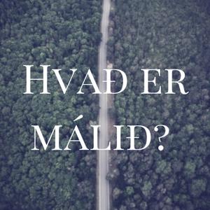 Hvað er málið? by Sigrún Sigurpáls