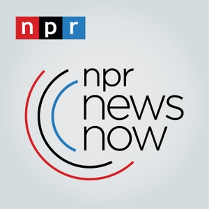 NPR News Now by NPR