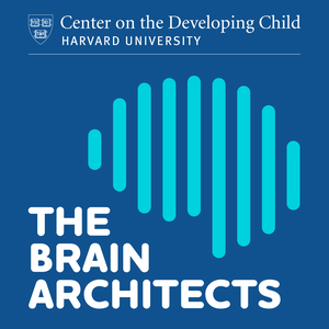 The Brain Architects by Center on the Developing Child at Harvard University