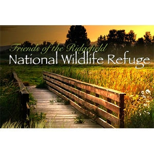 Ridgefield National Wildlife Refuge Auto Tour - Ridgefield, WA