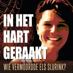 In het hart geraakt: wie vermoordde Els Slurink? by Dagblad van het Noorden