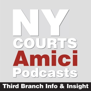 Amici: Third Branch Info & Insight by New York UCS