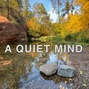 A Quiet Mind by Robert Jackson
