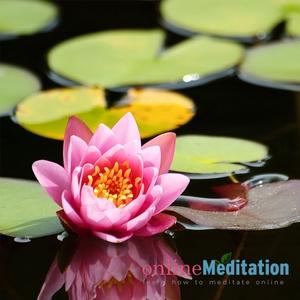 Online Meditation Course by Ozge Ozkaya
