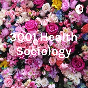 3001 Health Sociology by Gizem Saatci